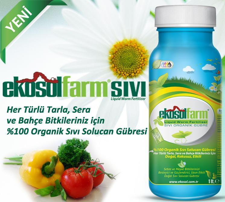 EkosolFarm-sivi-vegi1