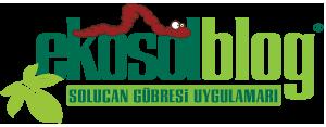 EkosolBlog-logo